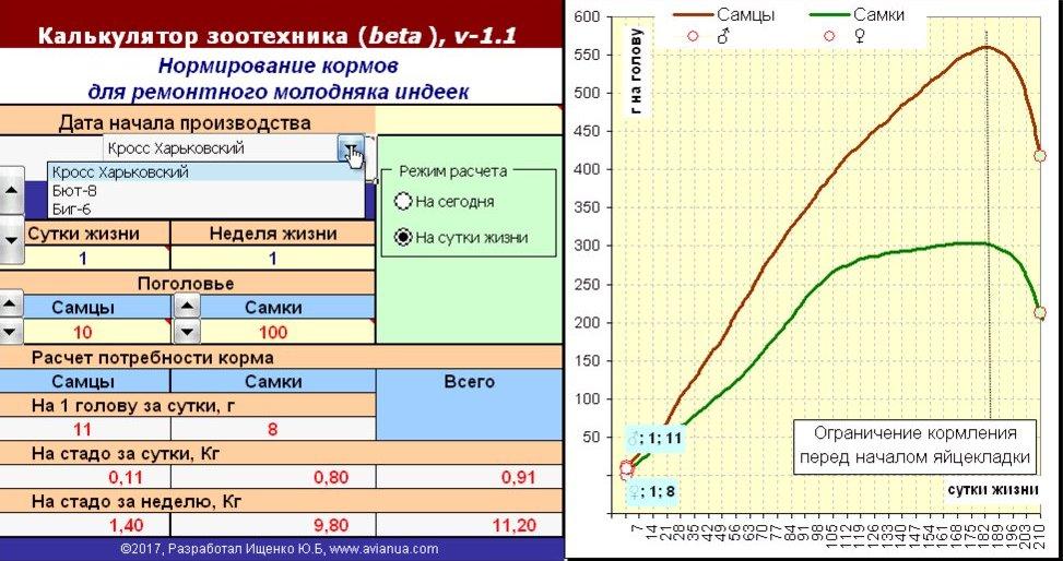 Калькулятор розрахунку добової норми корму для індиків