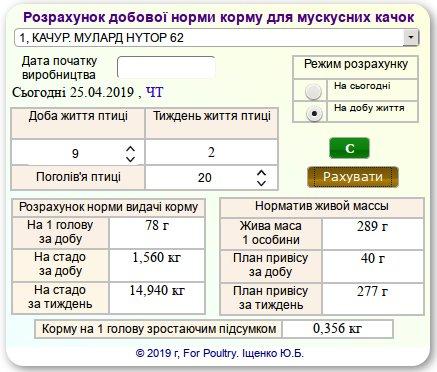 Розрахунок норми згодовування корму для м'ясних качок мулард